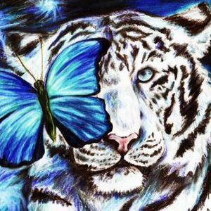 The White Tiger Story